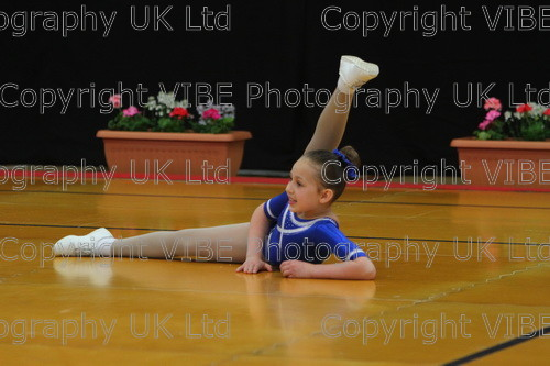 IMG 4836 