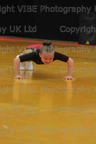 IMG 4190 