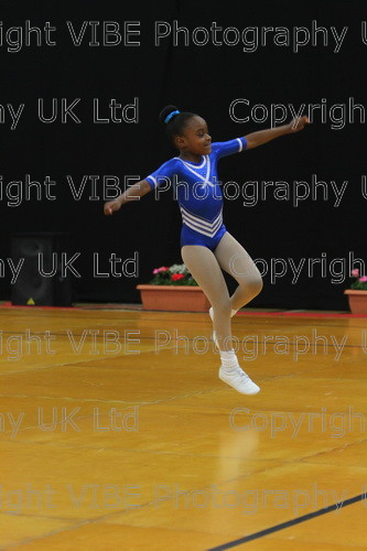 IMG 4585 