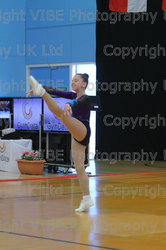 IMG 0137 