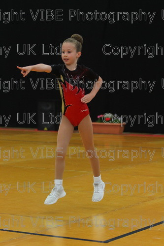 IMG 4515 