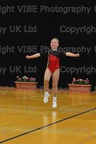 IMG 4207 
