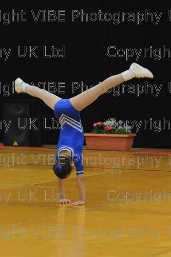 IMG 4795 