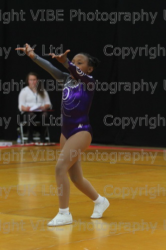 IMG 4329 