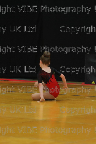 IMG 4500 