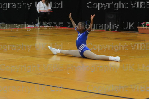 IMG 4606 