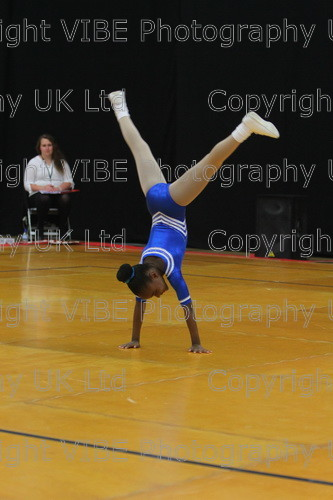 IMG 4595 