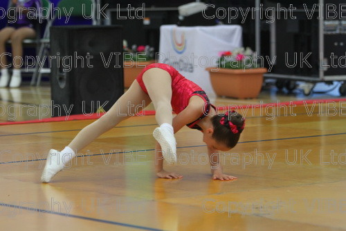 IMG 4352 