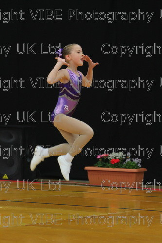 IMG 4925 