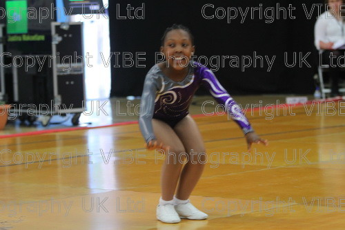 IMG 4315 