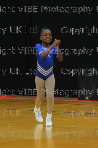 IMG 4562 