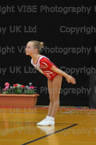 IMG 4634 