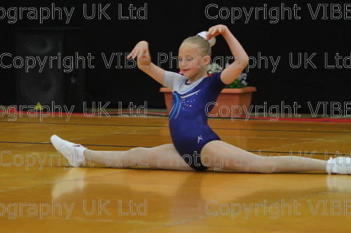 IMG 4271 