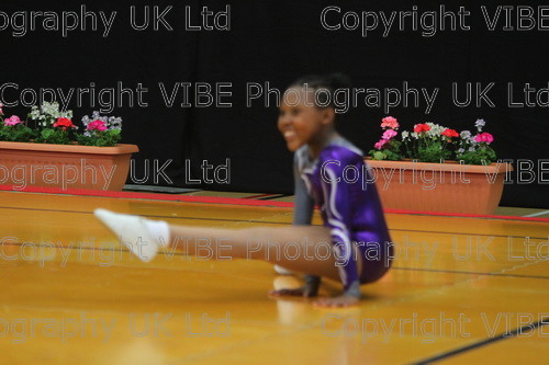 IMG 4278 