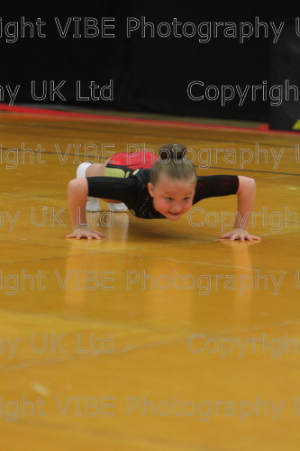 IMG 4189 