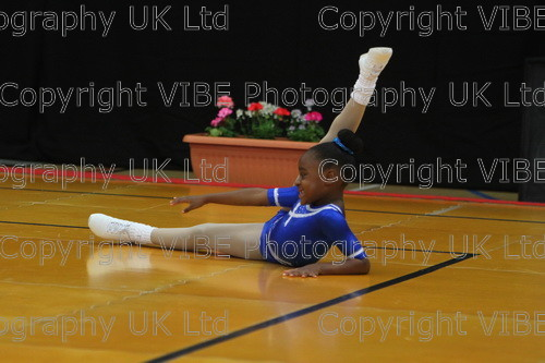 IMG 4554 