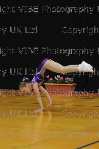 IMG 4928 